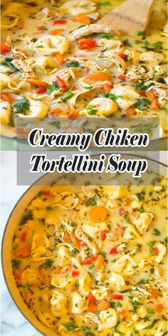 Soup recipes 422705115026365961 - Light and Creamy Chicken Tortellini Soup Recipe. A cozy blend of chicken, vegetables, spice, cheese, and tortellini in a thin creamy broth. Crock Pot Recipes, Easy Soup Recipes, Chicken Recipes, Recipes With Chicken Gumbo Soup, Italian Chicken Soup, Cheese Tortellini Recipes, Creamy Tortellini Soup, Crockpot Chicken Tortellini Soup, Creamy Chicken Tortilla Soup
