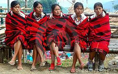 Nagaland is a hill state located in the far north-eastern part of India.Nagaland inhabited by the Naga tribes, captured international attention during world war II, because it was here that the Japanese advance was halted by British and Indian troops. Majority of the Naga population is engaged in farming and weaving activities. The fairs and festivals of the different Naga tribes showcase the inherent local beliefs of the people of the state. Above all the people here are warm - hearted and…