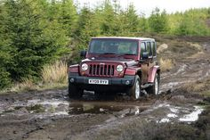 Used Jeep Wrangler, 4x4, Antique Cars, Club, Vintage Cars