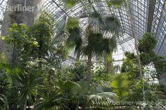 Botanischer Garten Dahlem