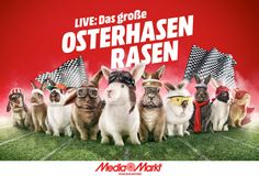 Sponsored: Das große Osterhasenrasen: