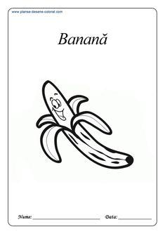 Fructe - Planse de colorat si educative Gerbil, Anaconda, Chinchilla, Blogging, Chinchillas, Green Anaconda