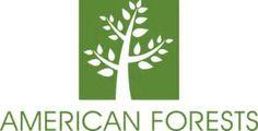 PLANT MORE TREES - Ecosia