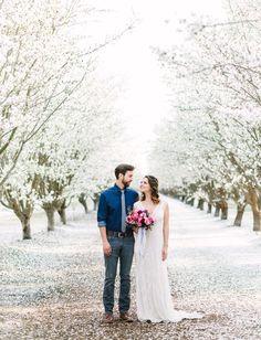Modern Almond Orchard Inspiration