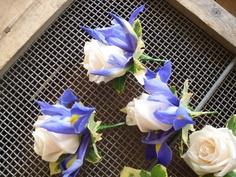 iris and rose buttonhole idea Iris Wedding Bouquet, Purple Wedding Bouquets, Spring Wedding Flowers, Fall Wedding, Wedding Ideas, Wedding Inspiration, White Rose Boutonniere, Wedding Preparation, Blooming Flowers