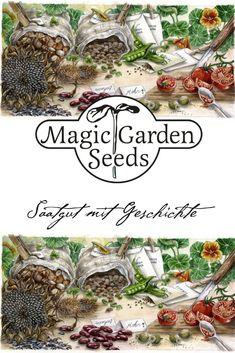 exotische Blüten Rarität Saatgut seltene Garten Balkon Pflanze WALDGEISSBART