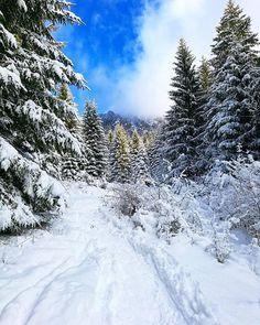 Čarovné prechádzky  #praveslovenske od @palopadala  Cestou na Veľký Rozsutec :)