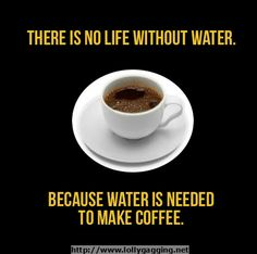 There is no life without water, because without water is needed to make coffee. http://lollygagging.net/funny-stuff-about-coffee.html