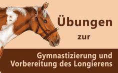 Die Gymnastizierung ist ein zentraler Bestandteil jedes Pferdetrainings. Mit diesen 5 Übungen bereitest Du Dein Pferd gut auf's Longieren vor!