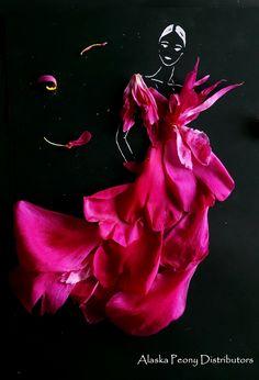 Felix Supreme peony petals, Alaska Grown