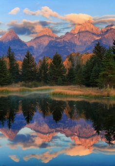 Schwabacher Landing, Grand Teton National Park, Wyoming Travel and see the world Wyoming, Grand Teton National Park, National Parks, Dossier Photo, Parcs, Amazing Nature, Belle Photo, Beautiful Landscapes, The Great Outdoors