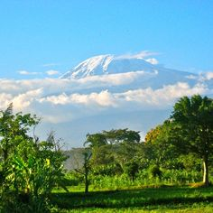 Kilimanjaro, the highest freestanding mountain in the world. Photo courtesy of thefrugalfrequentflyer on Instagram.
