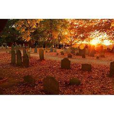 """It's been rainy lately ❤️ #autumn #fall #halloween #november #october #autumndecor #leaves #spooky #dark #gloomy #jackolaterns #orange #pumpkin #halloweenpeople"" Photo taken by @halloween.people on Instagram, pinned via the InstaPin iOS App! http://www.instapinapp.com (11/12/2015)"
