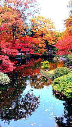 Japan - Herfst kleuren