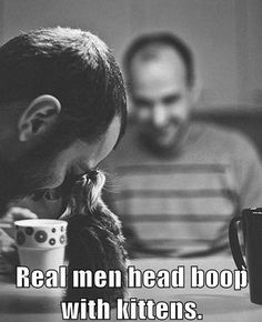 Real men head boop with kittens.