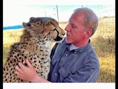 Man Reunites With African Cheetah Cat After 1 Year Absence - Do You Remember Me? A Documentary - YouTube