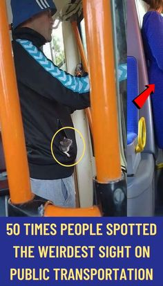 #times #people #spotted #weirdest #sight #public #transportation