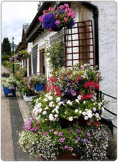 Village of Luss, Scotland.