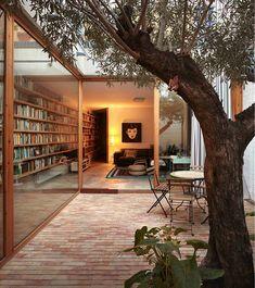 Terraza con árboles