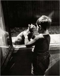 The-caretaker's Cat - Willy Ronis
