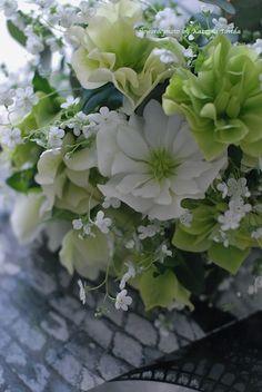 bouquet de mariée       rose de noël et myosotis