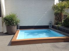 Our little plunge pool
