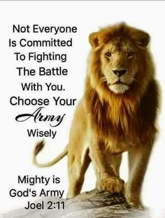 Grateful to Have God On My Side To Fight My Battles For Me! Thank You Lord For You Grace And Mercy and Your Overwhelming Peace! Warrior Quotes, Prayer Warrior, Faith Prayer, Faith In God, Bible Verses Quotes, Bible Scriptures, Lion Bible Verse, Biblical Quotes, Faith Quotes