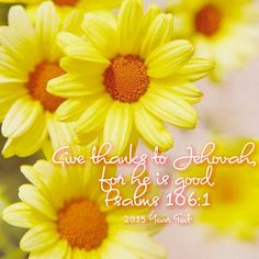 Give thanks to Jehovah, for he is good. Psalms 106:1