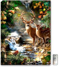 Deer Creek - Illuminated Fine Art