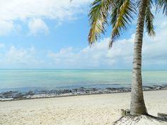 Malindi is een stad in Kenia en is gelegen aan de kust in het zuidoosten van Kenia. Het staat ook wel bekend als de 'tweede kuststad van Kenia'. De stranden zijn breed, hagelwit en worden goed onderhouden. Het is dan ook een populaire stad voor het toerisme.