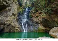 Tropical rain forest waterfall on Joao Gomes River, levada do Bom Sucesso walk, Funchal, Madeira island, Portugal Forest Waterfall, Funchal, Beautiful Waterfalls, Forest Rain, Portugal, Tropical, River, Stock Photos, Outdoor