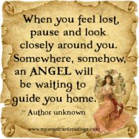 Angels Gardian Angel, Angel Readings, Your Guardian Angel, Angel Guidance, Archangel Michael, Christmas Angels, Christmas Quotes, Tarot, Feeling Lost