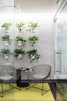 Patio wall or a Living Wall - 15 Unique Ways To Decorate With Houseplants - Photos Plant Wall, Plant Decor, Staff Lounge, Teacher Lounge, Lounge Design, Lounge Decor, Patio Wall, Garden Living, Break Room