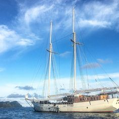 One of the biggest sailing ships in Indonesia offering you probably one of the coolest adventures out there: a trip through the remote islands of Raja Ampat! My trip with  @mutiara_laut was one to remember and a perfect end to my year in Asia!