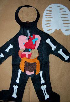 Z čeho se skládá lidské tělo? Zábavnou formou se děti mohou naučit něco o lidském těle.
