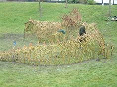 simone finishing a living willow dragon by willowpool, via Flickr