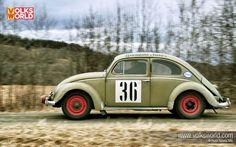 1952 Split Window Beetle desktop wallpaper