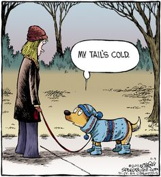 """""""My Tail's Cold."""" It's responsible to dress your pet. Speed Bump on Alphacomedy.com"""