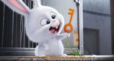 The Secret Life of Pets Movie Image 4