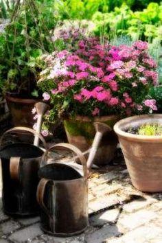Cuadro The Garden Nook III