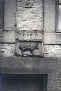 Maastricht. Gevelsteen 'In de Koye,' Koestraat 4.