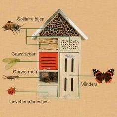 Insect hotel guide #gardeninsects