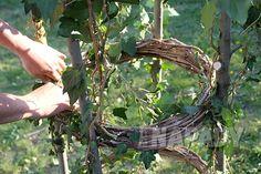 Prima nápady s kutilem Pavlem Zemanem   Primadoma.tv Grapevine Wreath, Grape Vines, Wreaths, Tv, Compost, Door Wreaths, Vineyard Vines, Television Set, Deco Mesh Wreaths