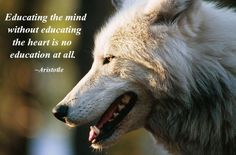 Educating the mind Without Educating the Heart is No Education at All--Aristotle--Pro-Wolf North West Photo