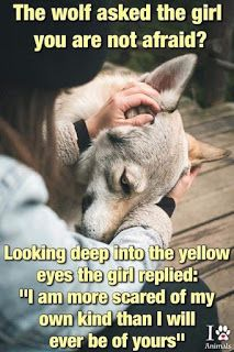 Dog Quotes, Wisdom Quotes, True Quotes, Words Quotes, Sayings, Lone Wolf Quotes, Meaningful Quotes, Inspirational Quotes, Wolf Spirit Animal