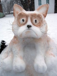 Grumpy Snow Cat ~ Of course, he's grumpy. He got left out in the cold! - Tap the link now to see all of our cool cat collections! Crazy Cat Lady, Crazy Cats, Ice Art, I Love Snow, Snow Sculptures, Snow Art, Winter Fun, Grumpy Cat, Winter Scenes