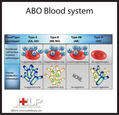 The ABO Blood System. blood type compatibility cross match