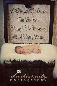 Window Quotes Adorable Vintage American Wooden Carved Signsgreat For A Window