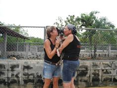 Recently two fantastic ladies from Canada came to volunteer for a couple of weeks at the shelter. Full of enthusiasm and fun, they headed into the main runs. Almost instantly Debbie came across the lovely Gaius and fell in love. If you think that you could give a loving home to one of our wonderful dogs, please contact paula@soidog.org.
