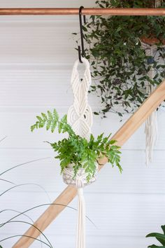 Macrame Plant Hanger // Indoor Planter // Hanging by KnottyBloom